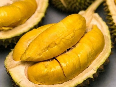 Building durian brand in the international market